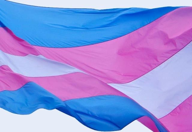 Trans-flag-3